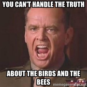 Jack Nicholson - You can't handle the truth! - you can't handle the truth about the birds and the bees