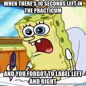 Spongebob What I Learned In Boating School Is - when there's 10 seconds left in the practicum and you forgot to label left and right
