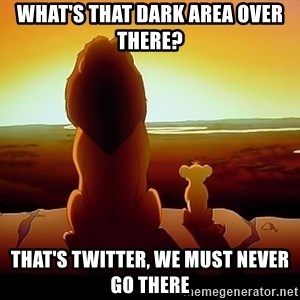 simba mufasa - What's that dark area over there? That's Twitter, we must never go there
