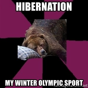 Sleep Disorder Grizzly - HIBERNATION MY WINTER OLYMPIC SPORT