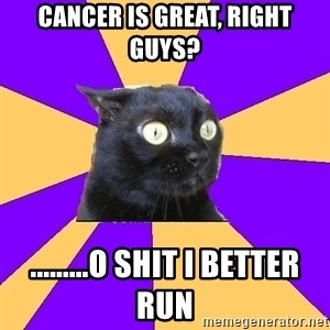 Anxiety Cat - Cancer is great, right guys? .........o shit I better run