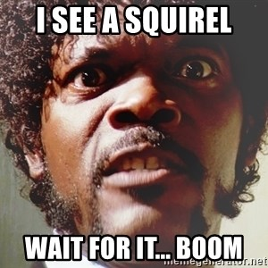 Mad Samuel L Jackson - i see a squirel wait for it... BOOM