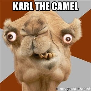Crazy Camel lol - Karl the Camel