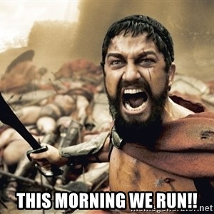 Spartan300 - this morning we run!!