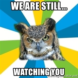Old Navy Owl - We are still... watching you