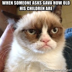 Grumpy Cat 2 - When someone asks Gava how old his children are
