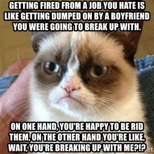 Grumpy Cat  - Getting fired from a job you hate is like getting dumped on by a boyfriend you were going to break up with.  On one hand, you're happy to be rid them, on the other hand you're like, wait, YOU'RE breaking up with me?!?