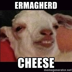 10 goat - Ermagherd Cheese
