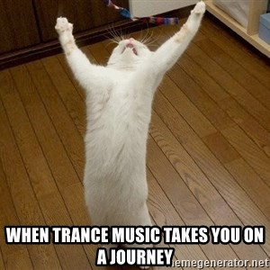 praise the lord cat - When trance music takes you on a journey
