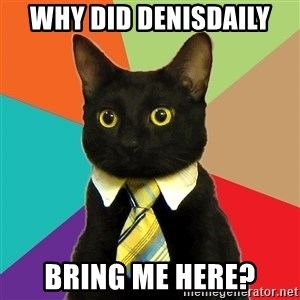 Business Cat - why did denisdaily bring me here?