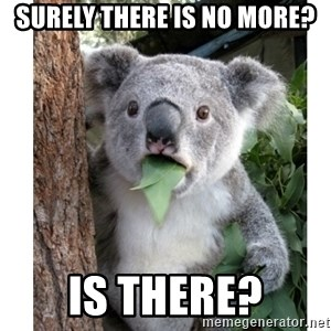 surprised koala - Surely there is no more? Is there?
