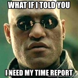 What if I told you / Matrix Morpheus - What if I told you I need my time report