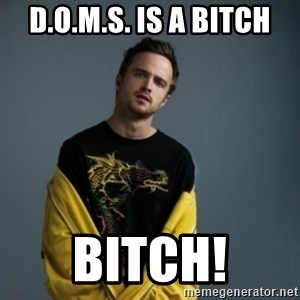 Jesse Pinkman - D.o.m.s. is a bitch Bitch!