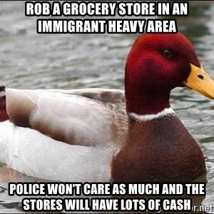 Malicious advice mallard - rob a grocery store in an immigrant heavy area police won't care as much and the stores will have lots of cash