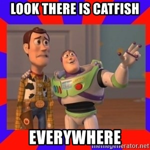 Everywhere - Look there is catfish everywhere