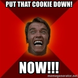 Angry Arnold - put that cookie down! Now!!!