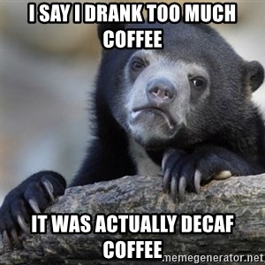 Confession Bear - I say I drank too much coffee It was actually decaf coffee