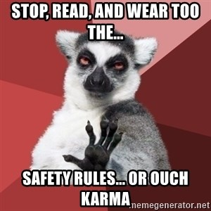 Chill Out Lemur - Stop, Read, and Wear too the... Safety rules... Or Ouch karma