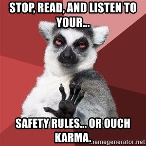 Chill Out Lemur - Stop, Read, and Listen to your...  Safety rules... Or ouch karma.