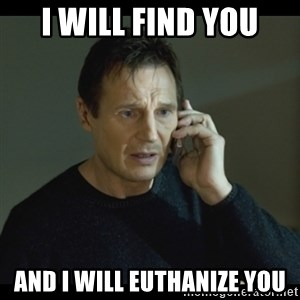 I will Find You Meme - I will find you And I will euthanize you