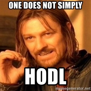 One Does Not Simply - ONE DOES NOT SIMPLY HODL