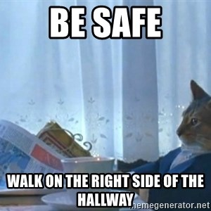Sophisticated Cat - Be Safe Walk on the right side of the hallway