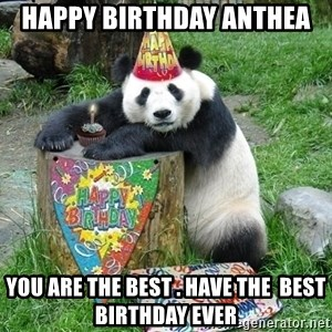 Happy Birthday Panda - happy birthday anthea you are the best . have the  best birthday ever