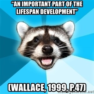 """Lame Pun Coon - """"an important part of the lifespan development"""" (Wallace, 1999, p.47)"""