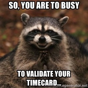 evil raccoon - So, you are to busy to validate your timecard...