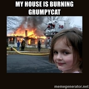 burning house girl - my house is burning grumpycat