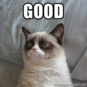 Grumpy cat good - good