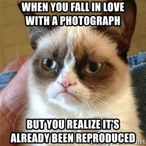 Grumpy Cat  - when you fall in love                    with a photograph but you realize it's                          already been reproduced