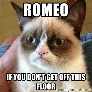 Grumpy Cat  - ROMEO if you don't get off this floor