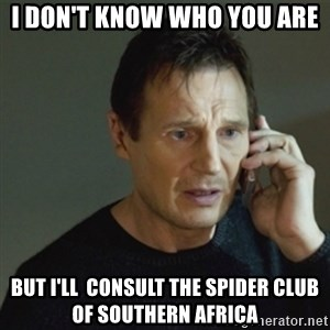 taken meme - I don't know who you are but I'll  consult The Spider Club of Southern Africa