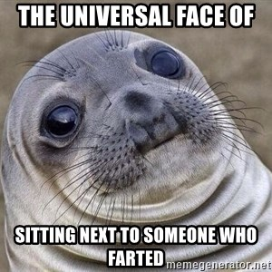 Awkward Seal - The Universal Face of sitting next to someone who farted