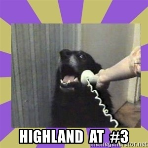 Yes, this is dog! - highland  at  #3