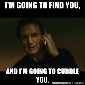 liam neeson taken - I'm going to find you, and I'm going to cuddle you.