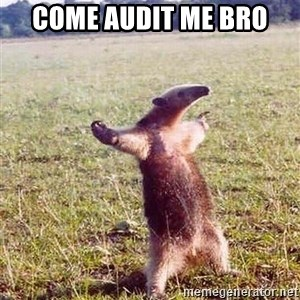 Anteater - Come Audit Me Bro