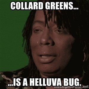 Rick James - Collard Greens... ...is a helluva bug.