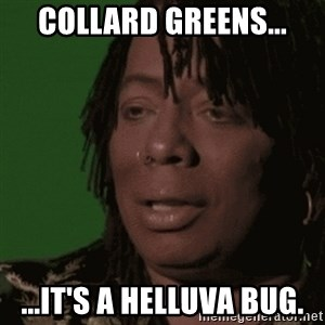 Rick James - Collard Greens... ...it's a helluva bug.
