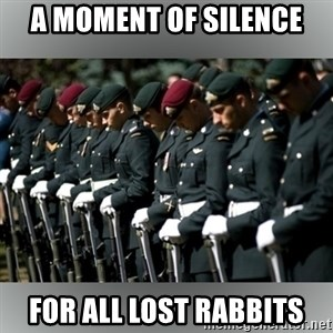Moment Of Silence - A moment of silence For all lost Rabbits