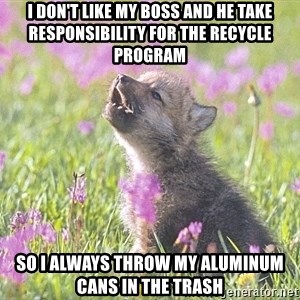 Baby Insanity Wolf - I don't like my boss and he take responsibility for the recycle program So I always throw my aluminum cans in the trash