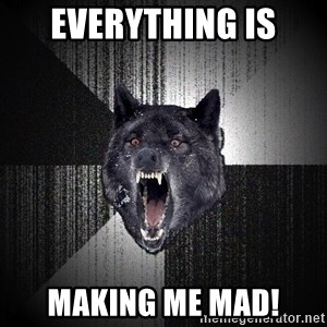 Insanity Wolf - Everything is making me mad!