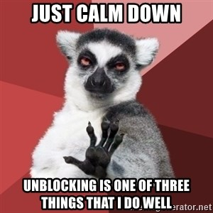 Chill Out Lemur - JUST CALM DOWN UNBLOCKING IS ONE OF THREE THINGS THAT I DO WELL