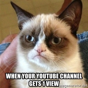 Grumpy Cat  - When your Youtube channel gets 1 view