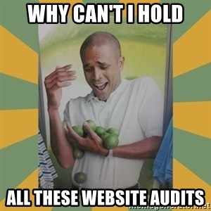 Why can't I hold all these limes - why can't i hold all these website audits
