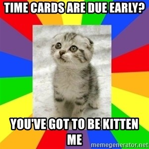 Cute Kitten - Time cards are due early? You've got to be kitten me