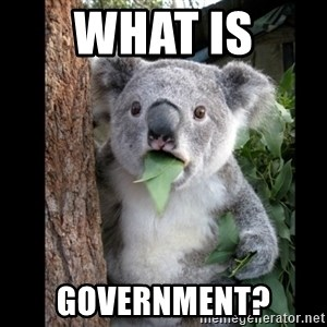 Koala can't believe it - What is  government?
