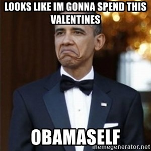 Not Bad Obama - Looks like Im gonna spend this valentines Obamaself
