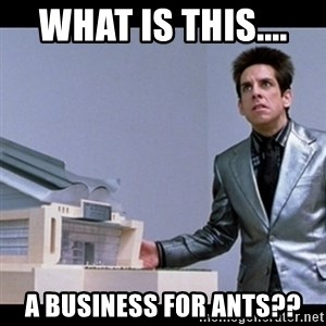 Zoolander for Ants - WHAT IS THIS....  A BUSINESS FOR ANTS??